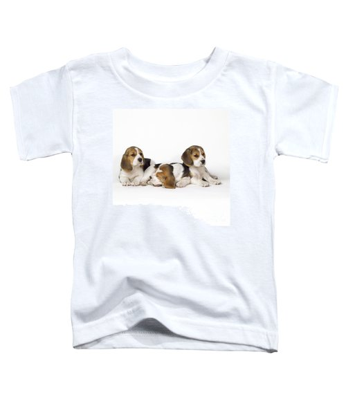 Beagle Puppies, Row Of Three, Second Toddler T-Shirt