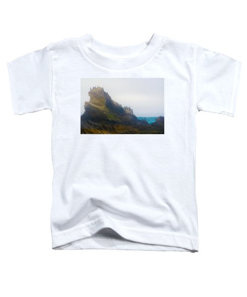 Bird Rock In The Fog Toddler T-Shirt