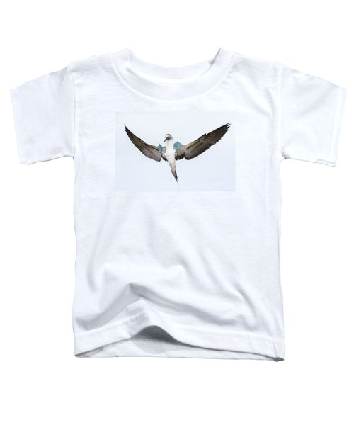 Blue-footed Booby Landing Galapagos Toddler T-Shirt by Tui De Roy