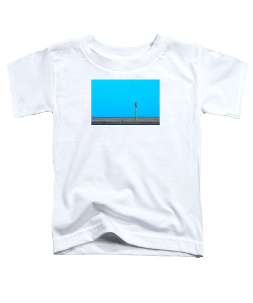 Blue Wall Parking Toddler T-Shirt