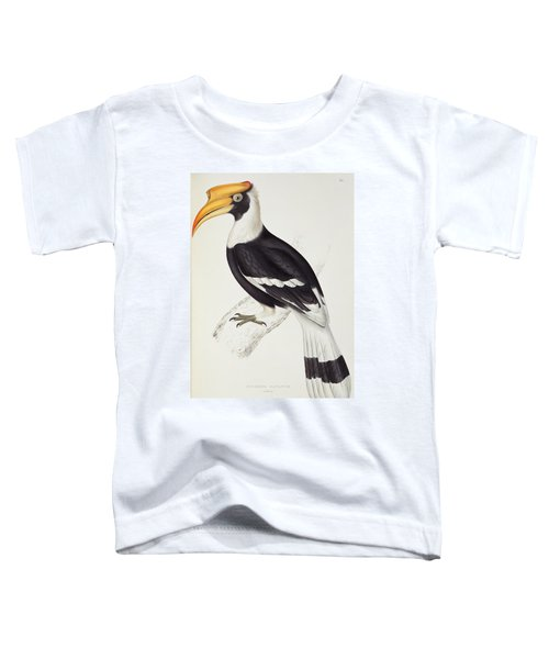 Great Hornbill Toddler T-Shirt by John Gould