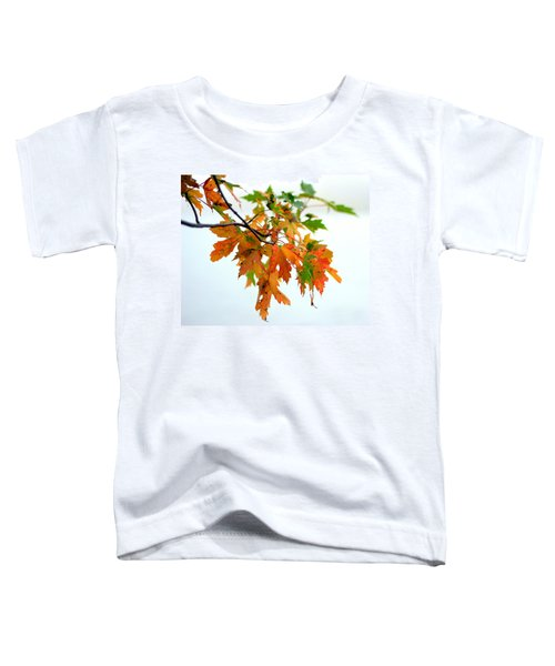 Changing Seasons Toddler T-Shirt