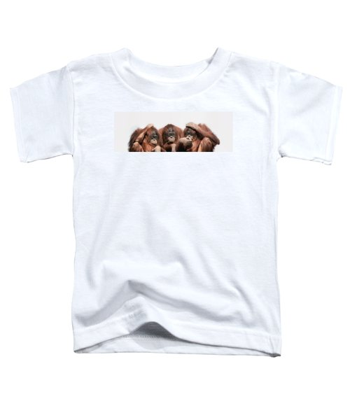 Close-up Of Three Orangutans Toddler T-Shirt by Panoramic Images