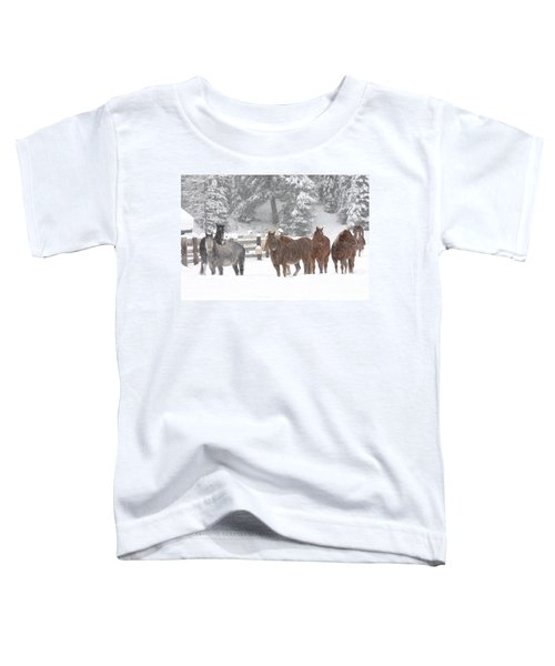 Cold Ponnies Toddler T-Shirt
