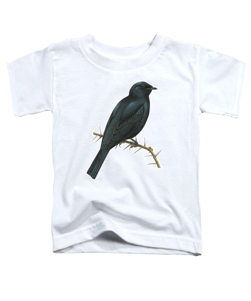 Cuckoo Shrike Toddler T-Shirt by Anonymous