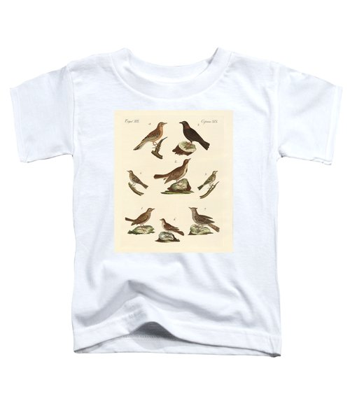 Different Kinds Of Larks Toddler T-Shirt by Splendid Art Prints
