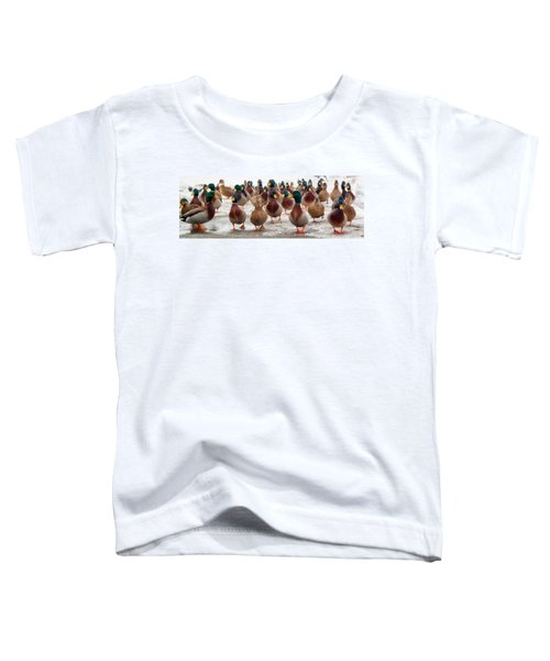 Duckorama Toddler T-Shirt