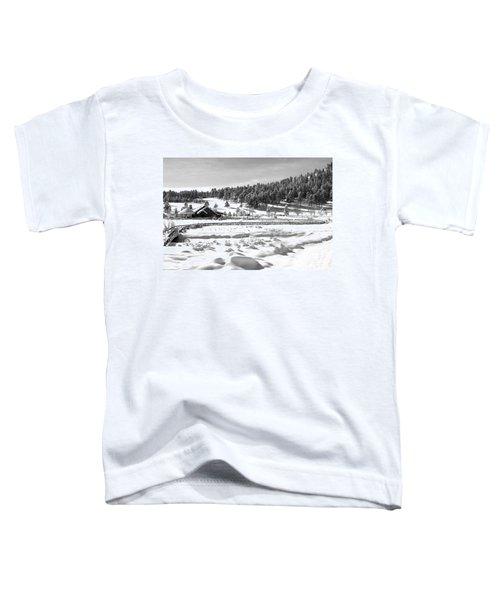 Evergreen Lake House In Winter Toddler T-Shirt