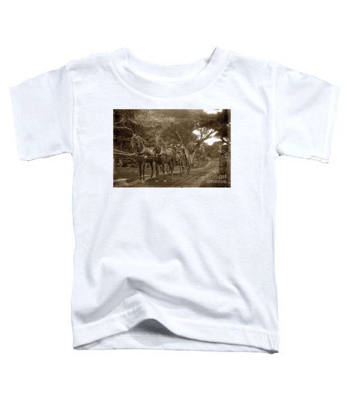 Family Out Carriage Ride On The 17 Mile Drive In Pebble Beach Circa 1895 Toddler T-Shirt