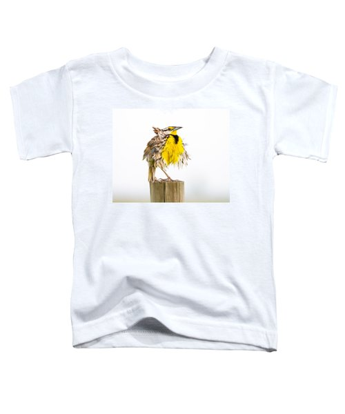 Flluffy Meadowlark Toddler T-Shirt by Bill Swindaman