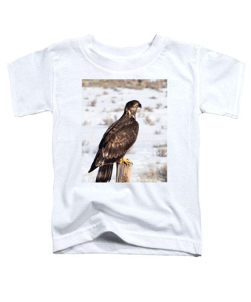Golden Eagle On Fencepost Toddler T-Shirt