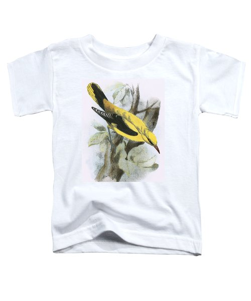 Golden Oriole Toddler T-Shirt by English School