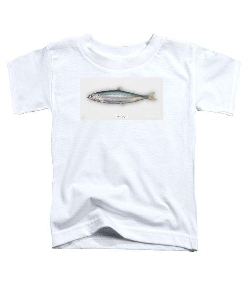Herring  Clupea Harengus - Hareng - Arenque - Silakka - Aringa - Seafood Art Toddler T-Shirt