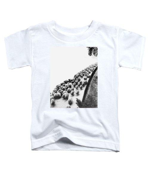 Hyde Park Sheep Flock Toddler T-Shirt
