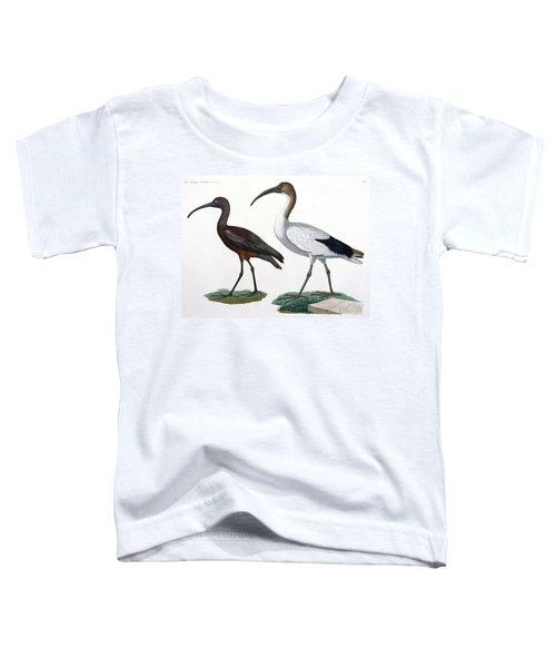Ibises Toddler T-Shirt