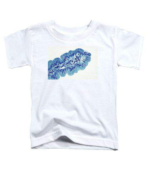 Intestinal Villi Lm Toddler T-Shirt