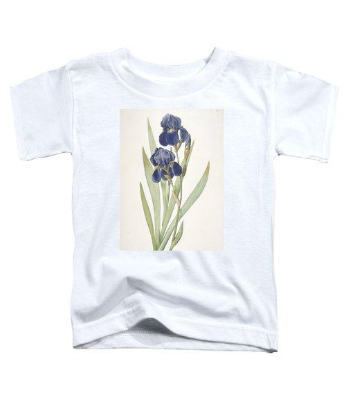 Iris Germanica Bearded Iris Toddler T-Shirt