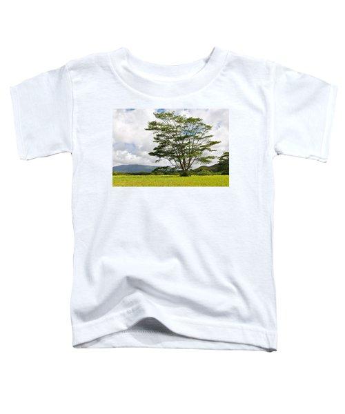Kauai Umbrella Tree Toddler T-Shirt