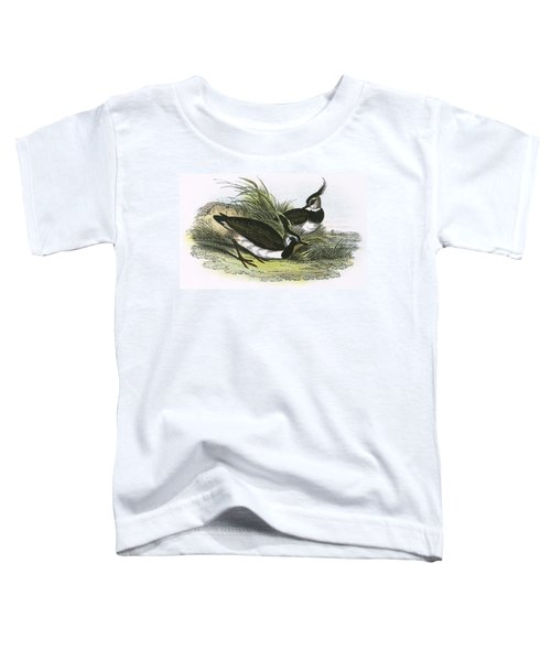 Lapwing Toddler T-Shirt by English School