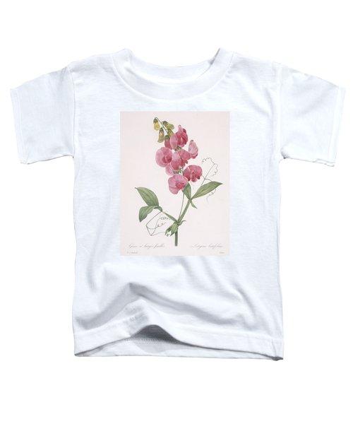 Lathyrus Latifolius Everlasting Pea Toddler T-Shirt