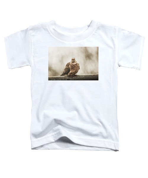 Mourning Dove Toddler T-Shirt