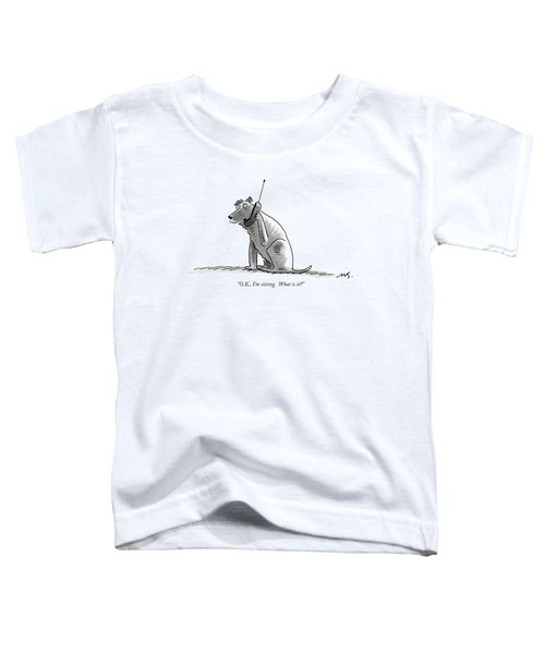 O.k., I'm Sitting.  What Is It? Toddler T-Shirt