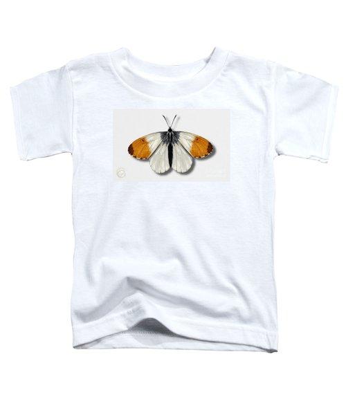 Orange Tip Butterfly - Anthocharis Cardamines Naturalistic Painting - Nettersheim Eifel Toddler T-Shirt