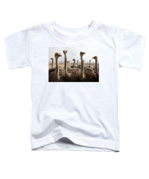 Ostrich Heads Toddler T-Shirt