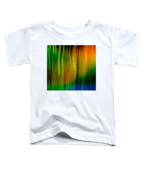 Primary Rainbow Toddler T-Shirt