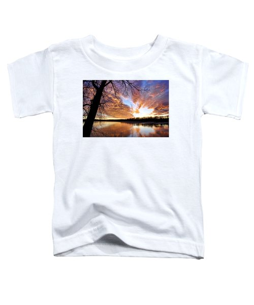 Reflected Glory Toddler T-Shirt