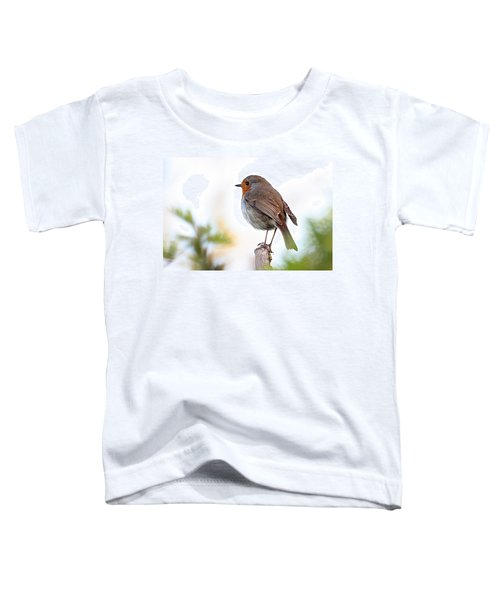 Robin On A Pole Toddler T-Shirt