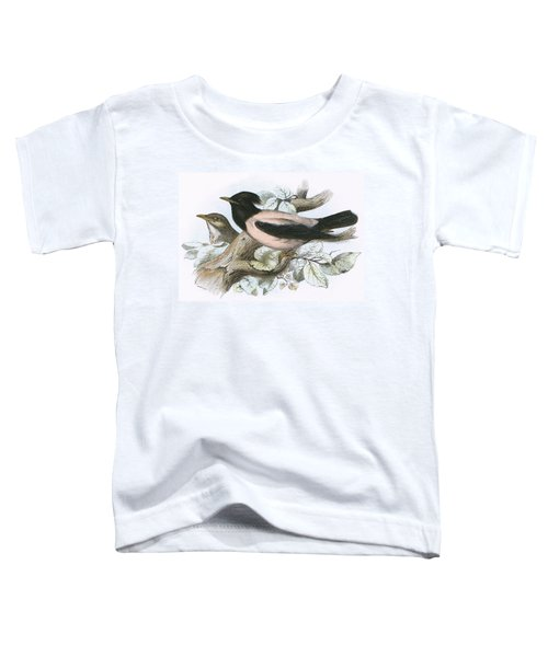 Rose Coloured Starling Toddler T-Shirt by English School