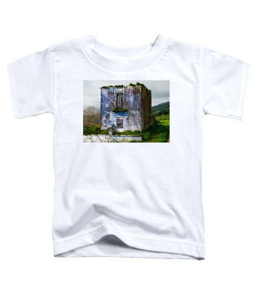 Ruins Of House Painted Blue Toddler T-Shirt