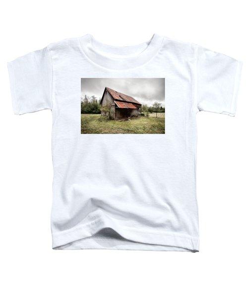 Rusty Tin Roof Barn Toddler T-Shirt