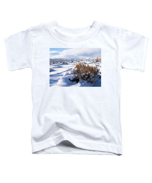 Sand Wash Basin In The Winter Toddler T-Shirt