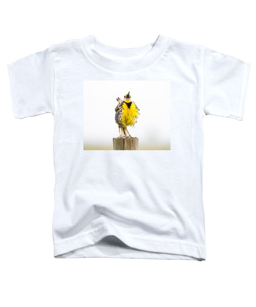Singing Meadowlark 2 Of 3 Toddler T-Shirt