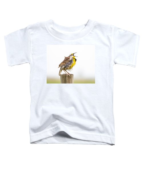 Singing Meadowlark 3rd Of 3 Toddler T-Shirt by Bill Swindaman