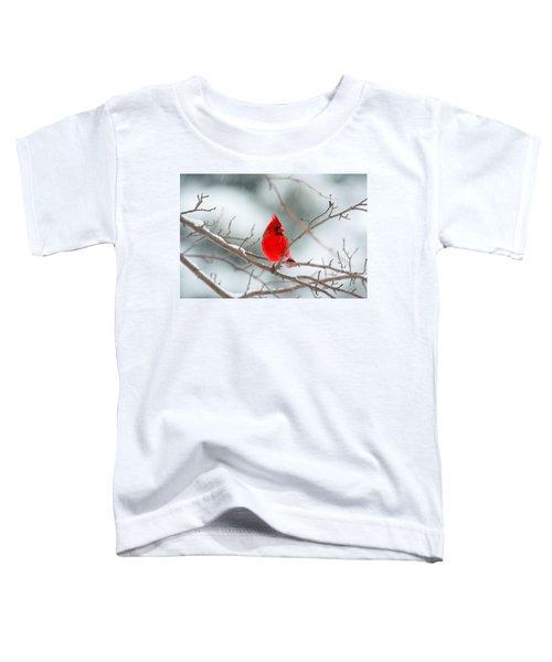 Snowy Cardinal Toddler T-Shirt