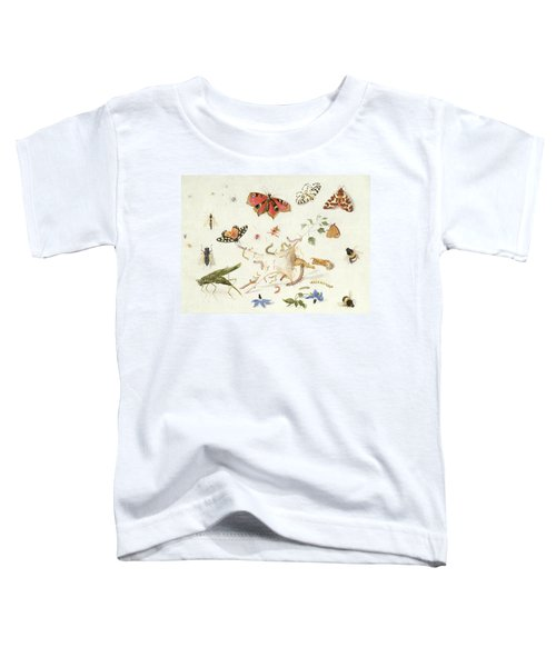 Study Of Insects And Flowers Toddler T-Shirt by Ferdinand van Kessel