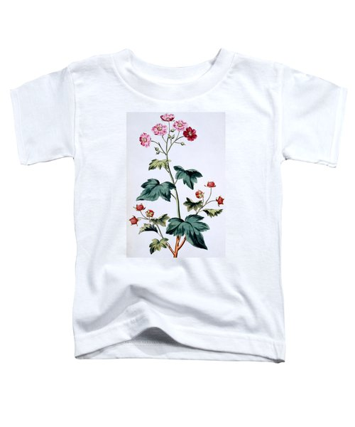 Sweet Canada Raspberry Toddler T-Shirt by John Edwards
