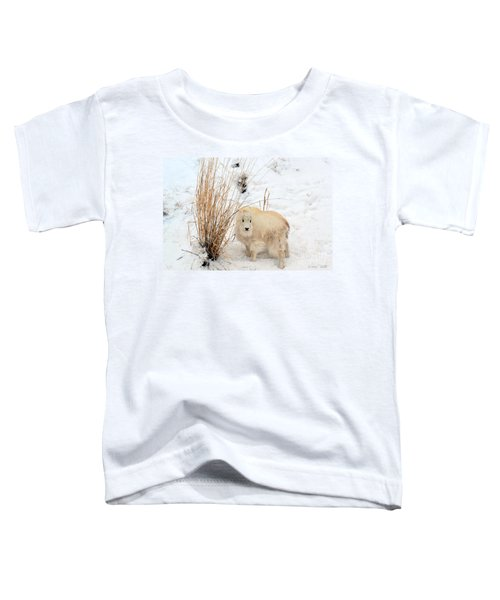 Sweet Little One Toddler T-Shirt