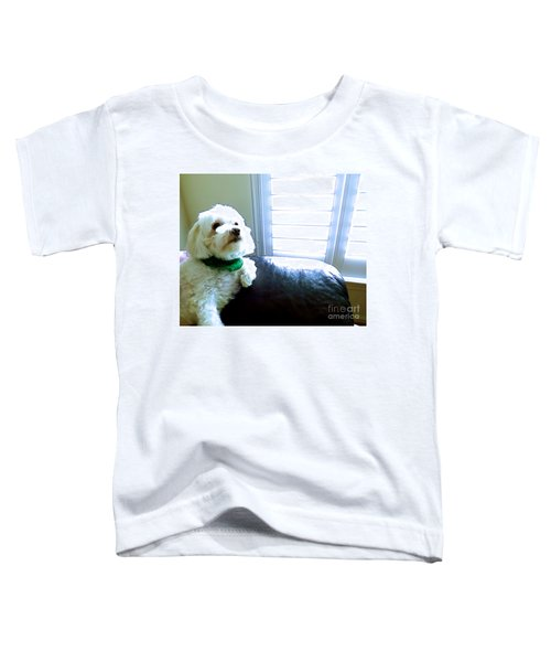 Teddy Toddler T-Shirt