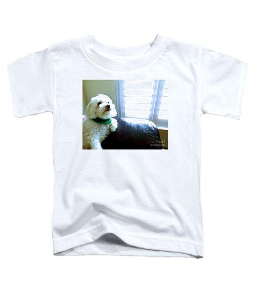 Teddy Toddler T-Shirt