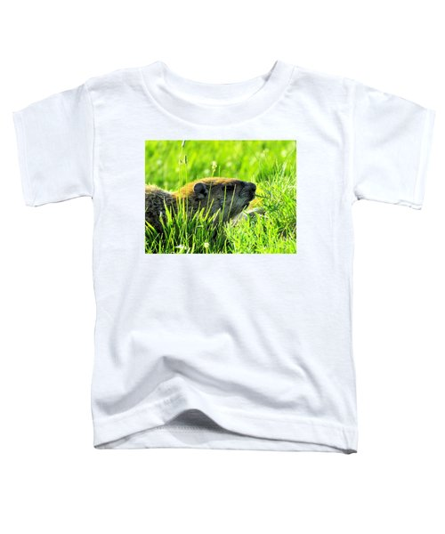 The Sound Of Silence Toddler T-Shirt