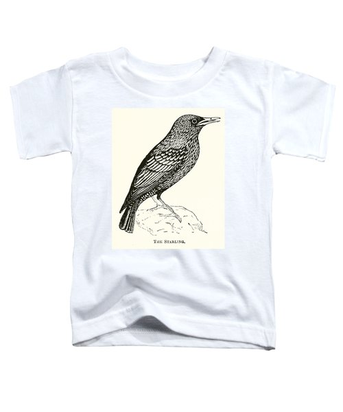The Starling Toddler T-Shirt by English School