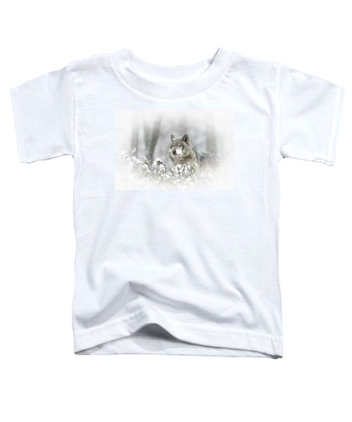 Timber Wolf Pictures 279 Toddler T-Shirt