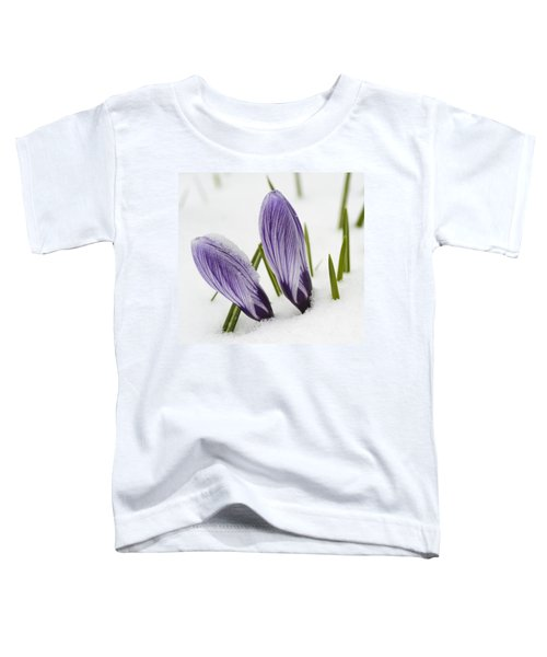 Two Purple Crocuses In Spring With Snow Toddler T-Shirt