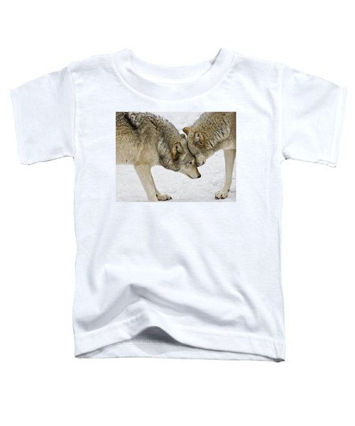Two Wolves In  A Staredown Toddler T-Shirt