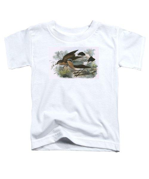 Wheatear Toddler T-Shirt by English School