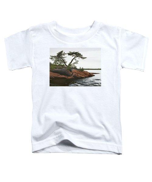 Windswept Toddler T-Shirt